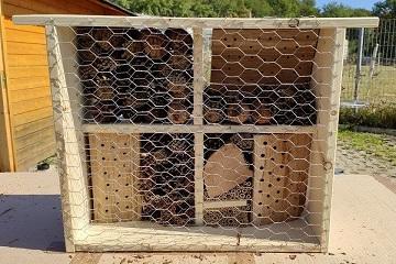 Insektenhotel bauen mit first energy
