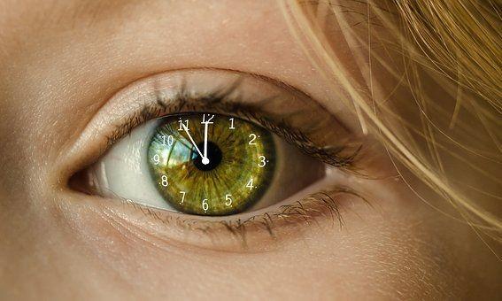 Fristen-im-Blick